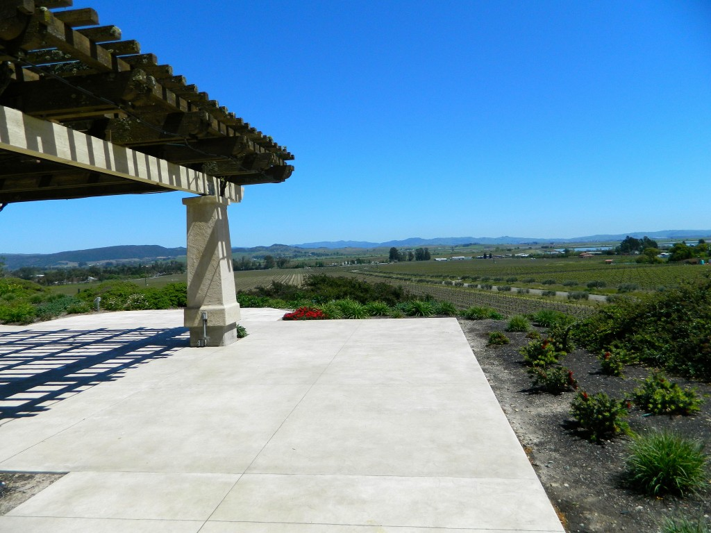 Sonoma California Wineries © Alaina McDavid
