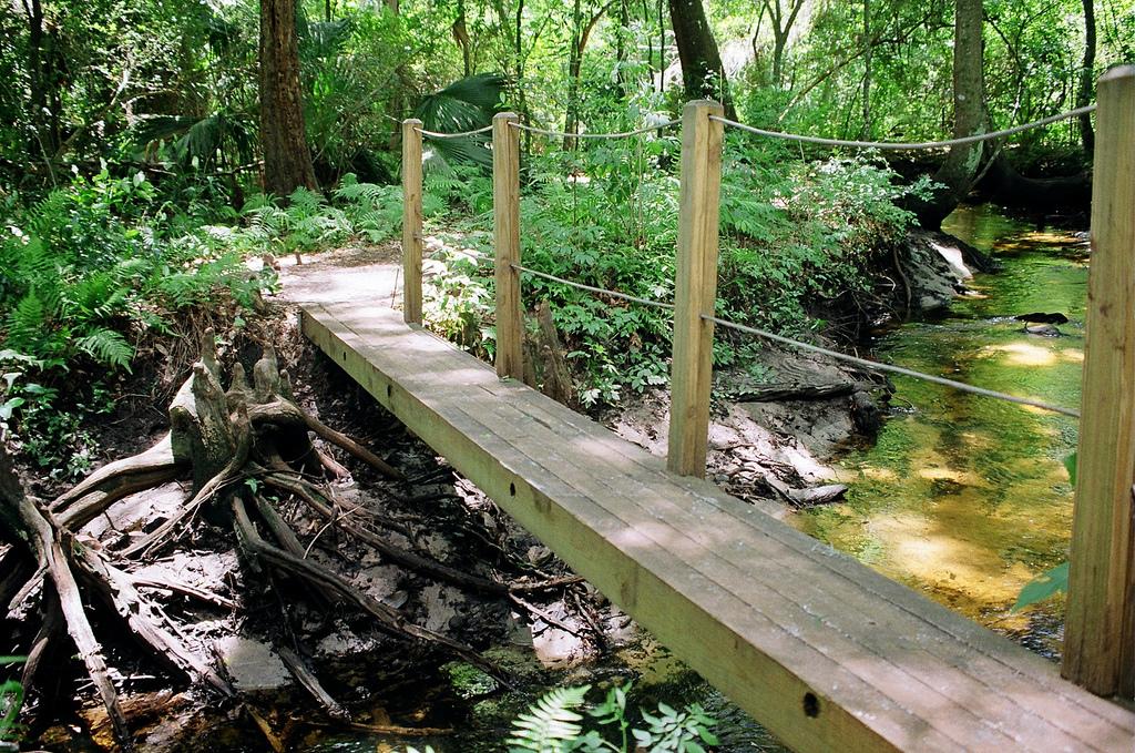 Jacksonville Arboretum Gardens Jacksonville Fl Wilb Flickr