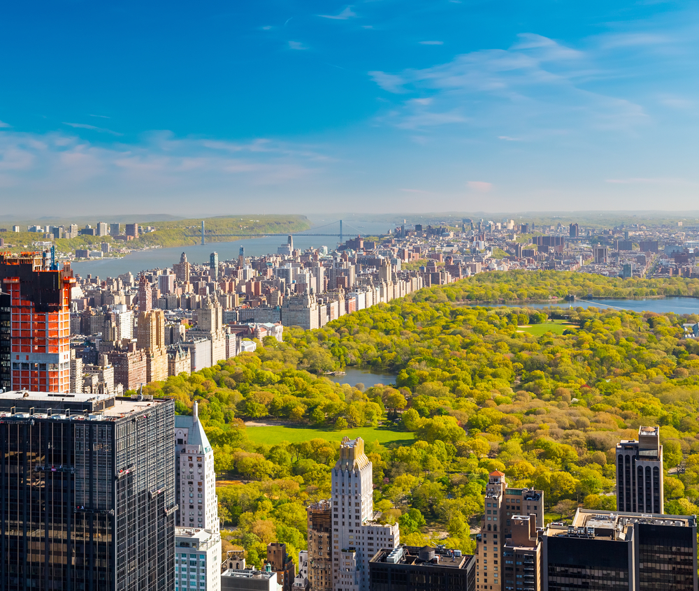 City Nyc: The Best Of Culture In New York