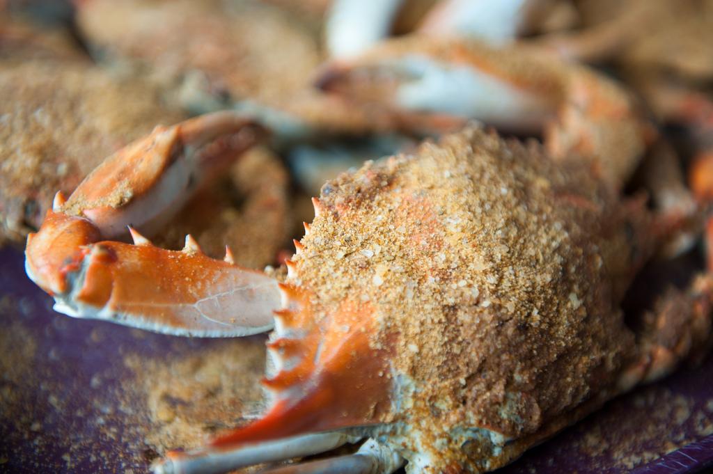 Best North Jersey Seafood Restaurants