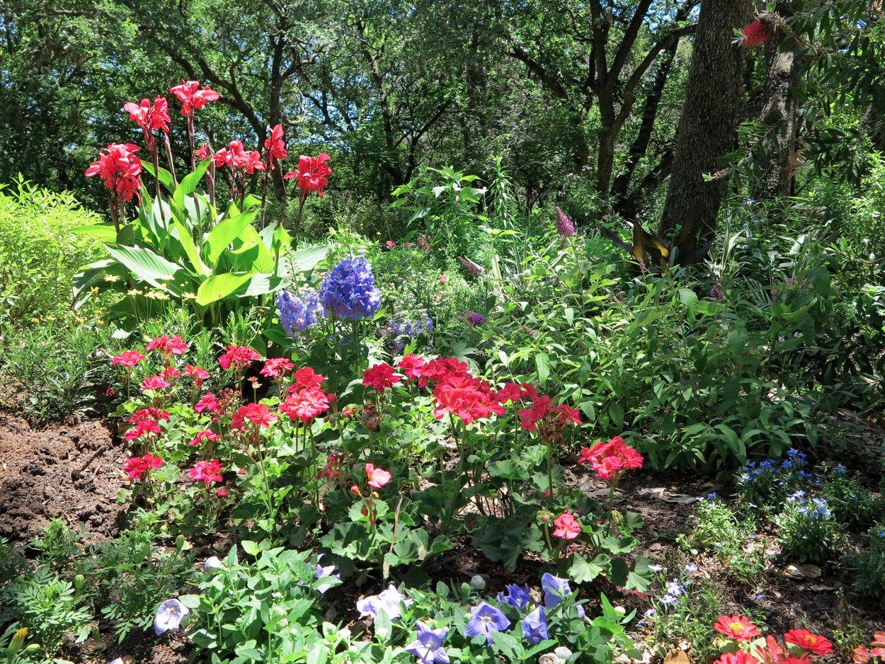 10 Beautiful Gardens Of Austin Texas