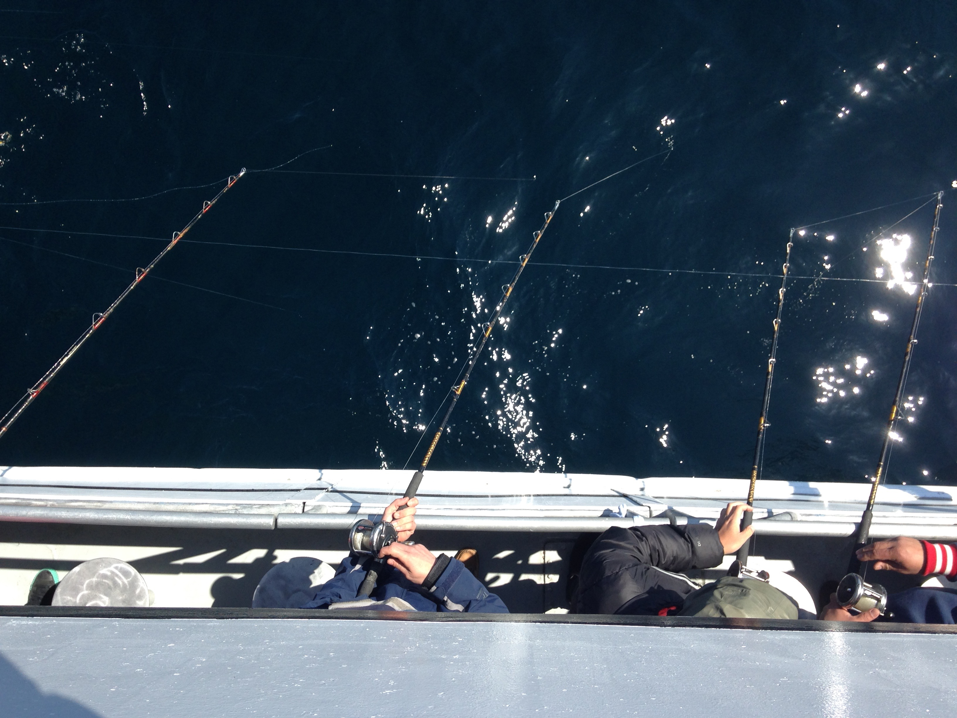 The 9 best day trips from boston for Deep sea fishing gloucester ma