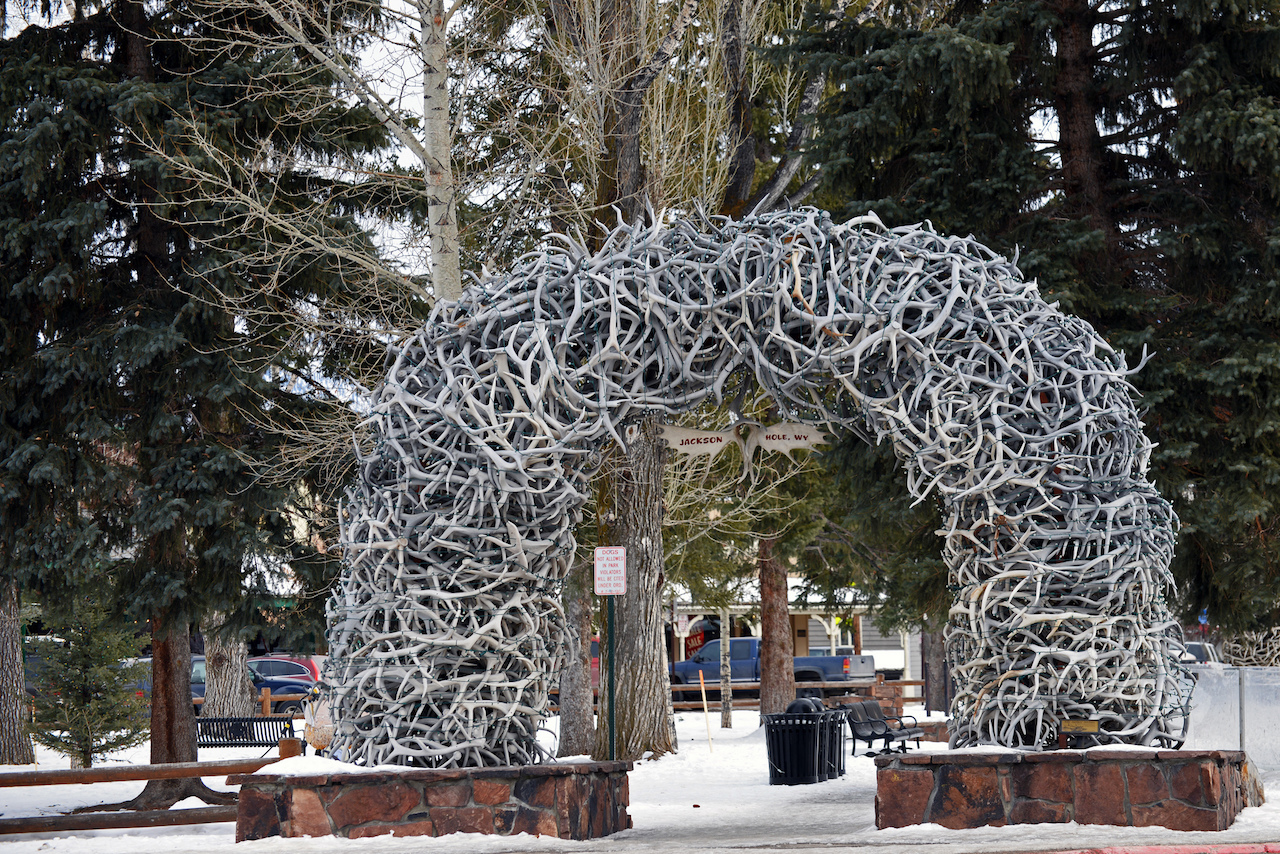 5 things to see and do in jackson hole wyoming for Things to do in jackson hole wy