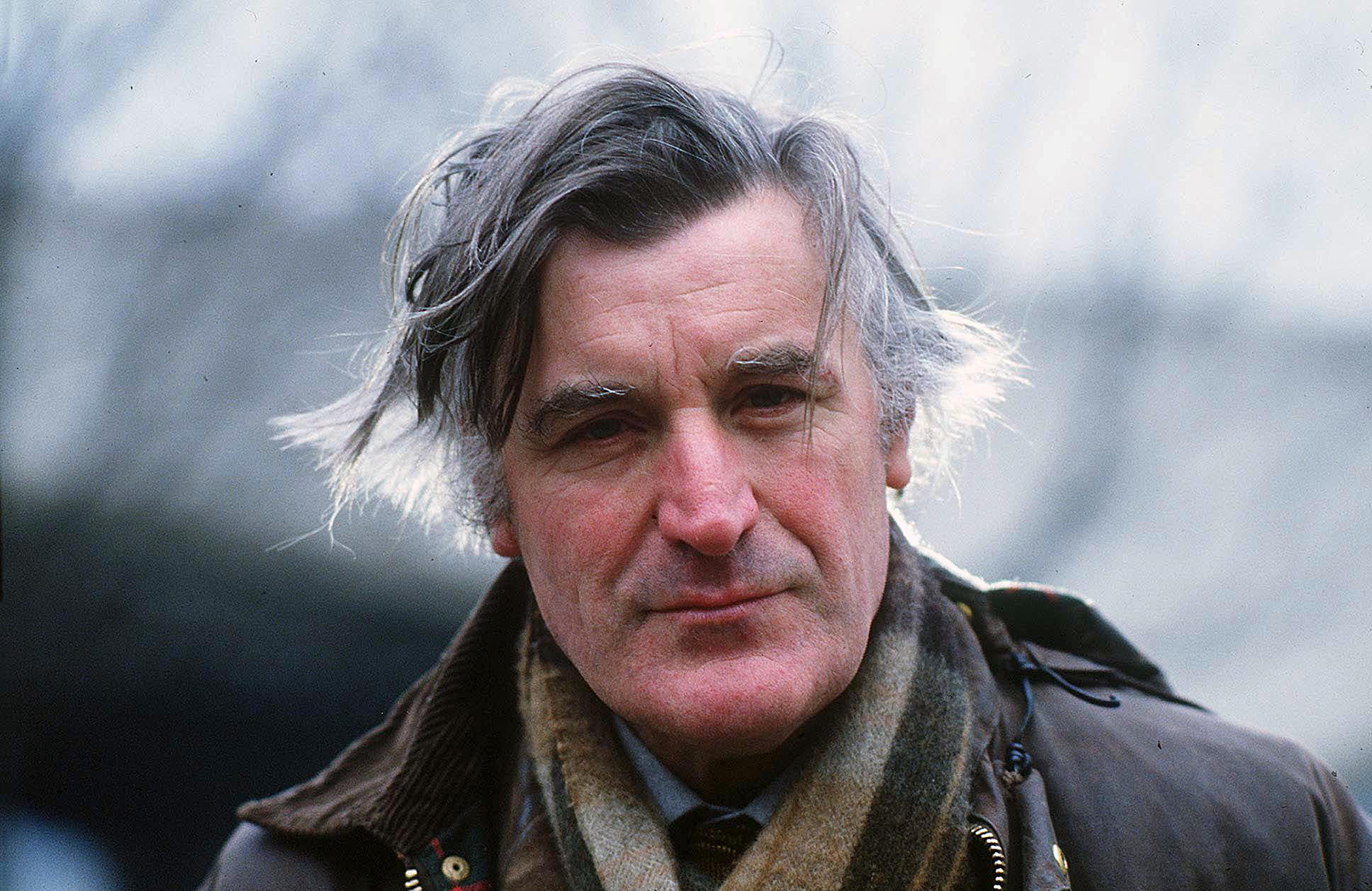 Ted hughes the shot essay
