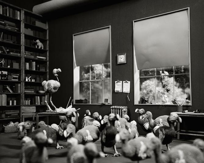 Lori Nix, Dodo