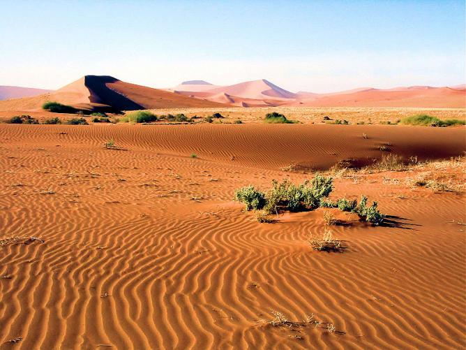 Namib-Naukluft Park in Namibia