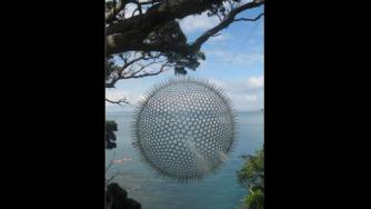 Virginia King, Pacific Radiolaria, 2011