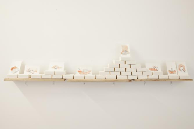 Hera Büyüktasciyan, A Survey on Anti-Memory, 2013