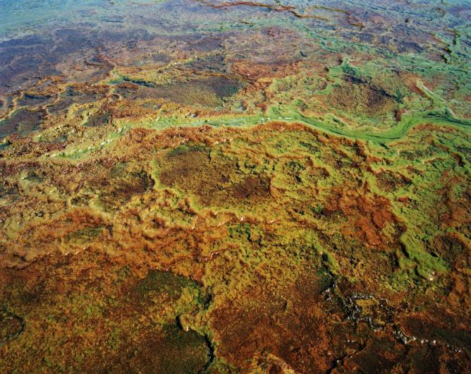 Acid mine drainage, Blesbokspruit, Emalahleni (Witbank), Mpumalanga, 2011 | © Ilan Godfrey