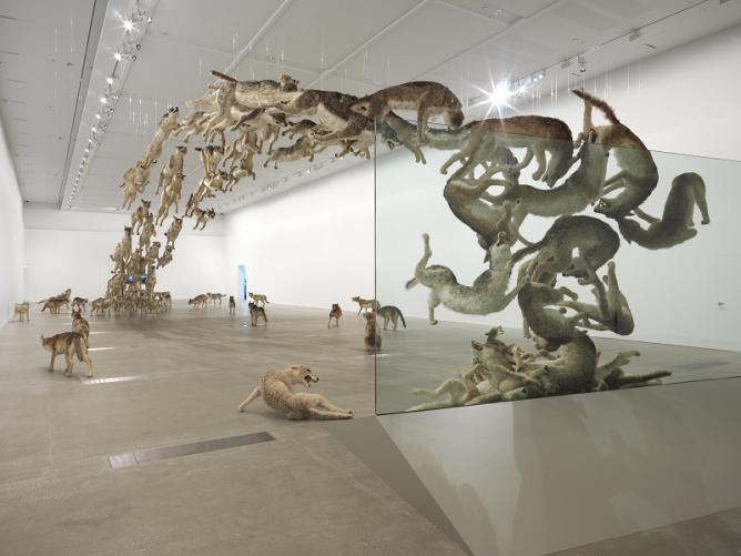 Cai Guo Qiang S Mind Blowing Realism In Queensland Australia