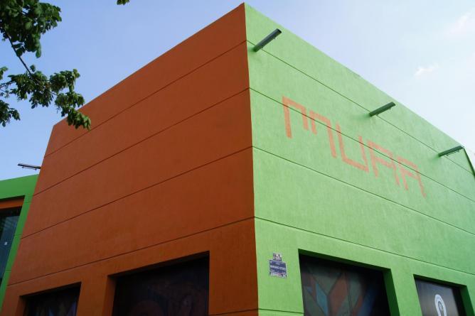 Museo de arte raul anguiano