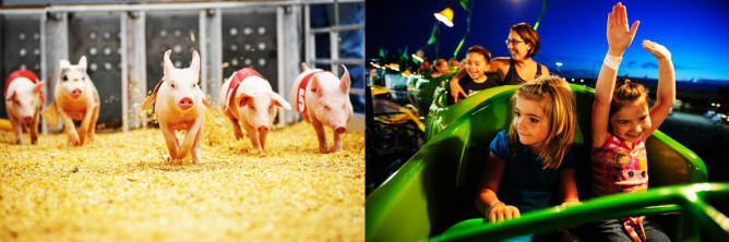 Everyone has fun at the fair! | Image Courtesy of Ohio State Fair
