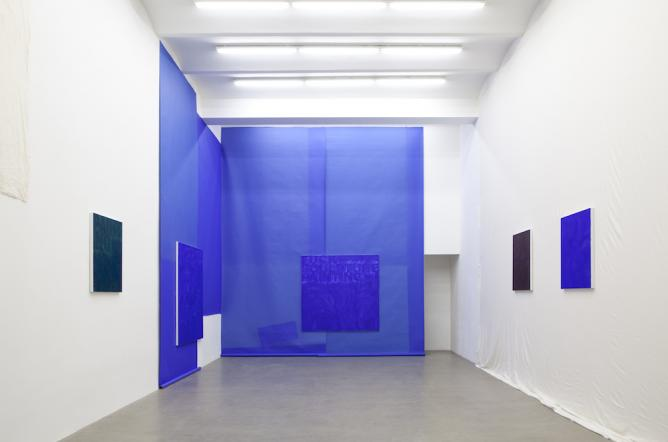 Heimo Zobernig, Exhibition view, Galerie Meyer Kainer, 2013