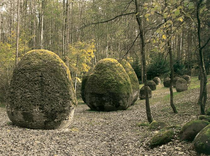 Magdalena Abakanowicz, Space of Unknown Growth