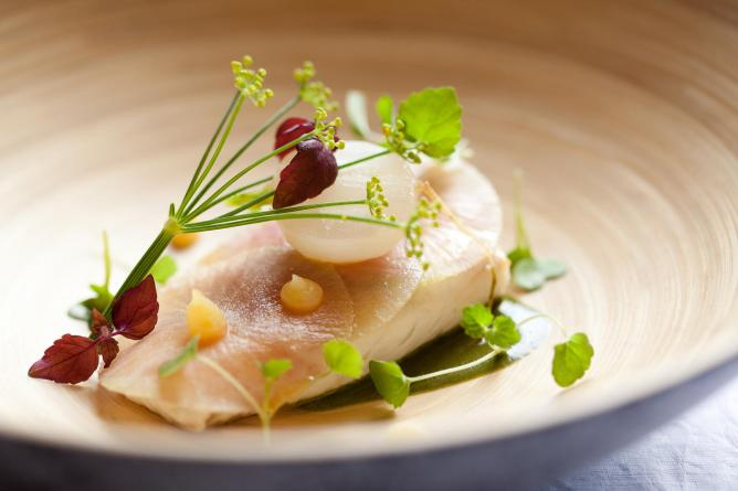 Turbot with turnip and wild herbs at Westminster Hotel   © Thai Toutain