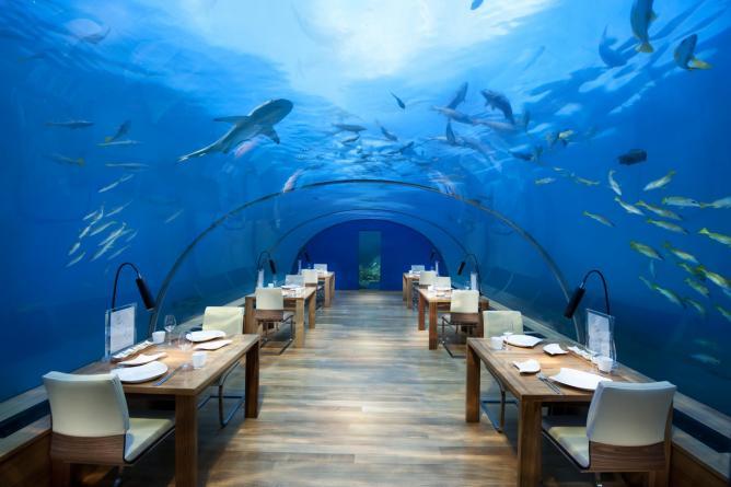 Ithaa Undersea Restaurant © Conrad Maldives