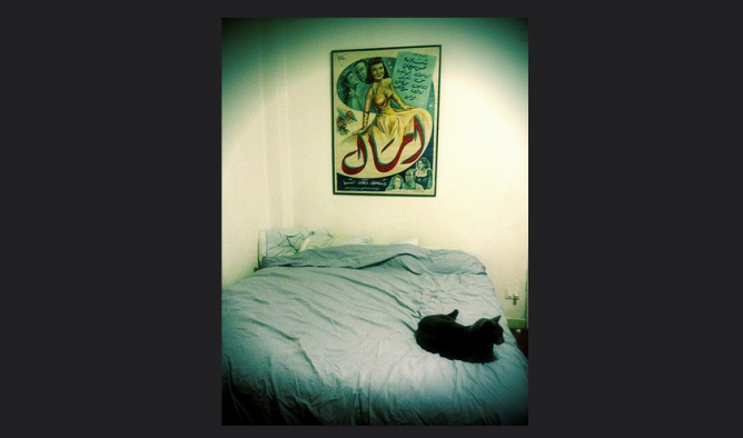 The cat, the bed and the poster © Myriam Abdelaziz/Flickr