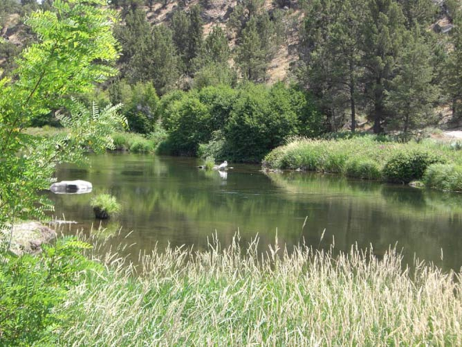 Deschutes River at Cline Falls State Park near Redmond, OR | © Orygun/WikiCommons