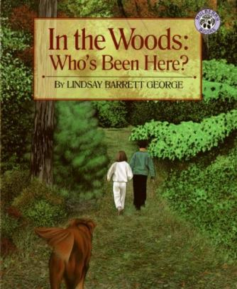 'In the Woods: Who's Been There' © Mulberry books