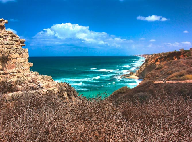 The must visit beaches in israel publicscrutiny Image collections