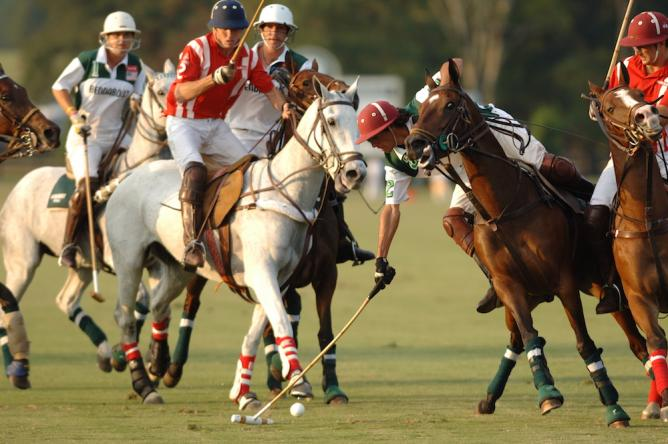 Polo in Aiken | Courtesy of Visit Aiken SC
