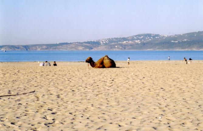 Beach at Tangier | © Sarah/Flickr
