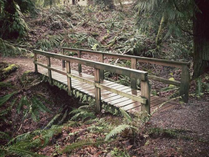 Wildwood Park in Puyallup | © Steven Pavlov/WikiCommons