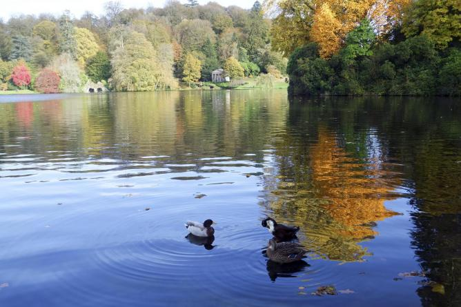 Duck lake, Wiltshire | © Cath in Dorset/Flickr