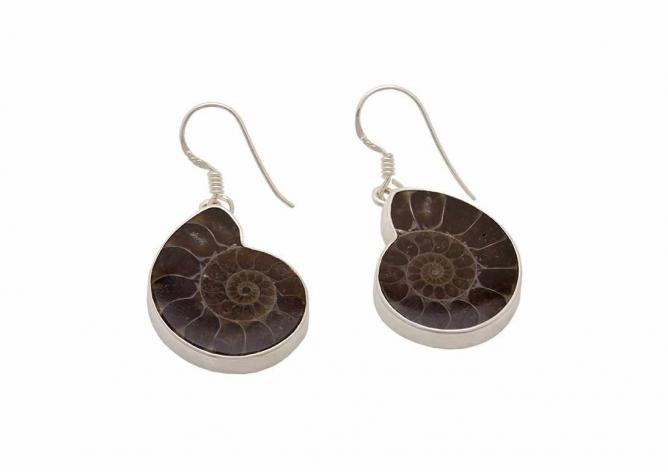 Ammonite Drop Earrings by David Scott-Walker