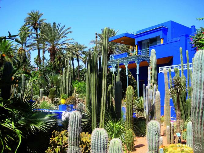 Villa Oasis in the Majorelle Gardens | © My Wave Pictures/ Flickr