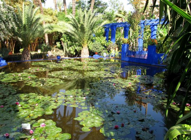 A lily pond in the Majorelle Gardens | © Tracy Hunter/ Flickr
