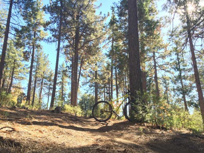 Idyllwild Mountain Bike Trails © moominsean/flickr