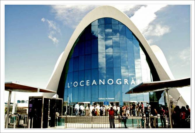 Top 10 things to do and see in valencia spain for Aquarium valencia bar