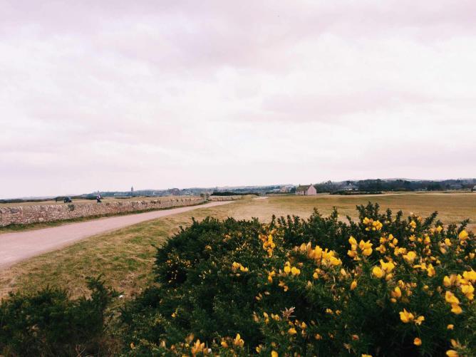 St Andrews Links | Courtesy of Madeleine Bazil