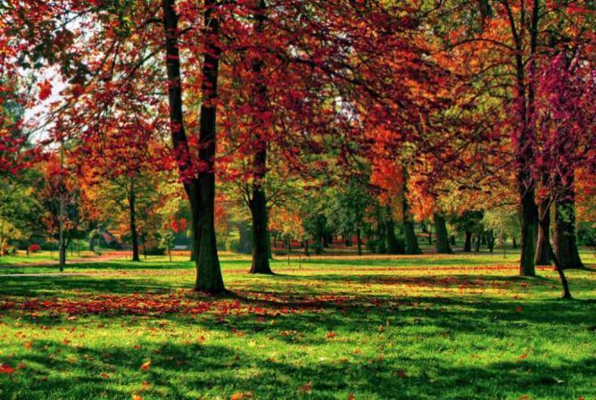 Kościuszko Park | © Szymon Pifczyk/Flickr
