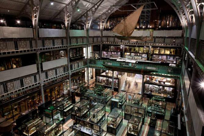 Pitt Rivers Museum, Oxford, UK | © Jorge Royan/Wikicommons