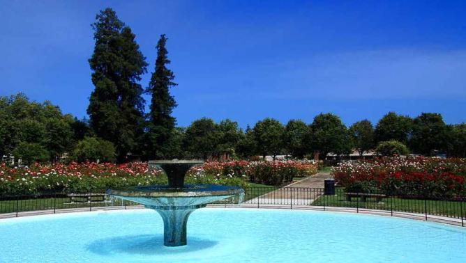 San Jose Municipal Rose Garden | © John Menard/WikiCommons