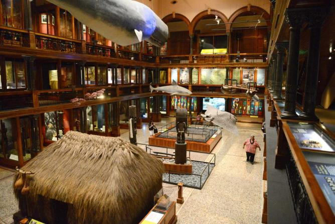 Inside the Bernice Pauahi Bishop Museum
