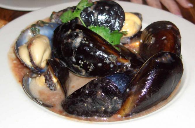Mussels at Higgins
