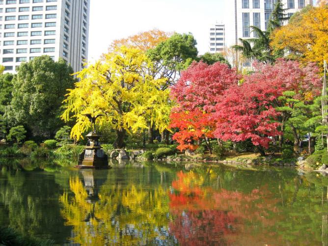 Kumogata Pond and yellow leaves at Hibiya Park l © Yasuyuki HIRATA/Flickr