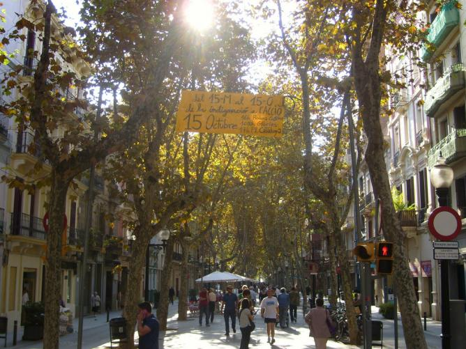 The 10 Best Bars in El Poblenou, Barcelona