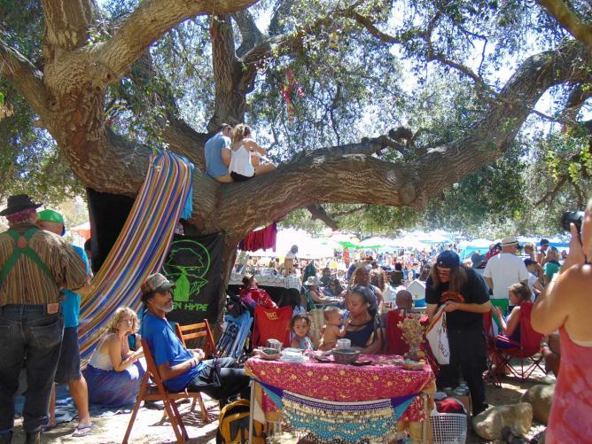 Bohemian Oak Tree Reggae on the Mountain 2015 | © Jasmine Ashoori