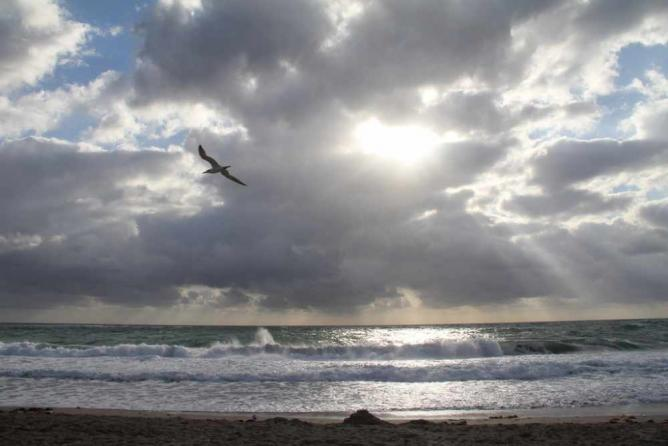 Morning in Pompano Beach, Florida | © John Spade/Flickr