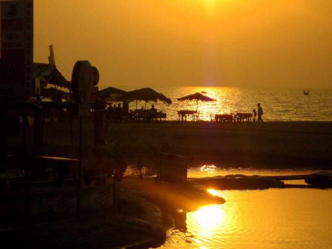 More oranggeeI © Parthiv Haldipur /Flickr