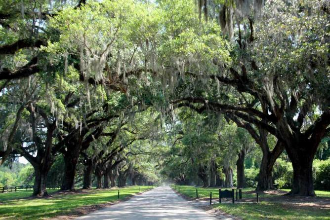 Boone Hall Plantation | © Kat.../Flickr
