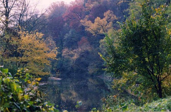 A shot of a creek on a fall day in Fairmount Park.