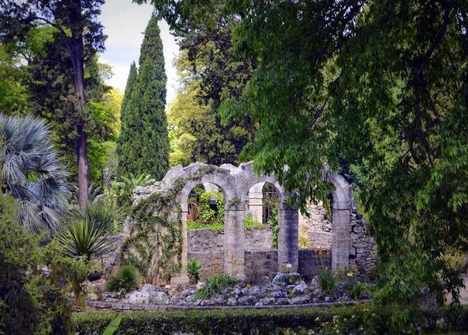 The top 10 things to see and do in montpellier for Jardines des plantes