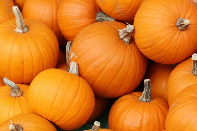 Pumpkins | © Danielle Scott/Flickr