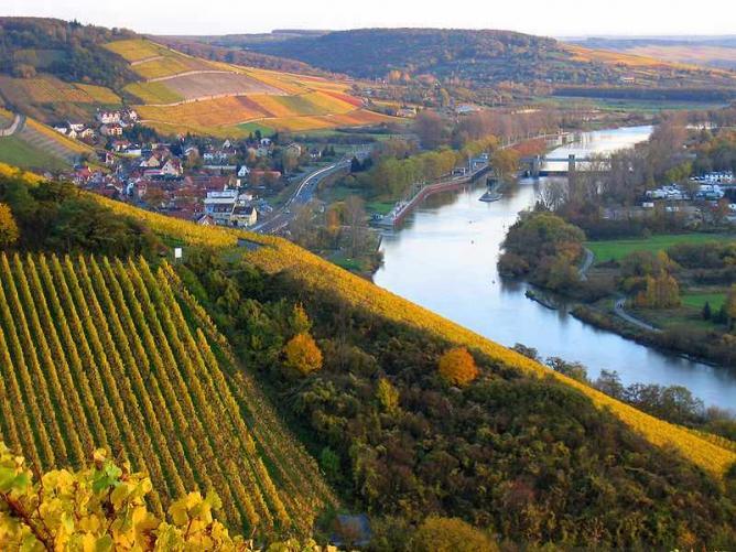 Franconian vineyards in autumn | © Axel/WikiCommons