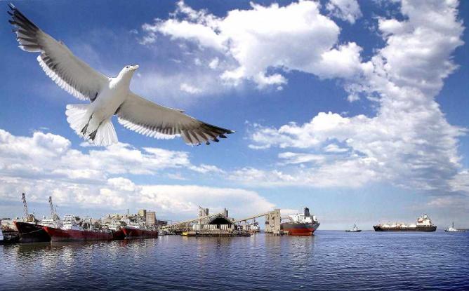 Bahía Blanca's port | Ⓒ IMO/Flickr